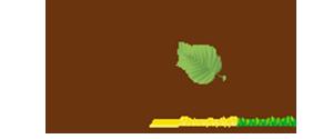 logo-mejia